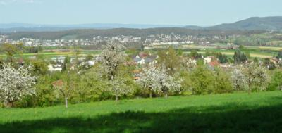 Witterswil